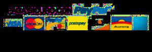 logo_paypa