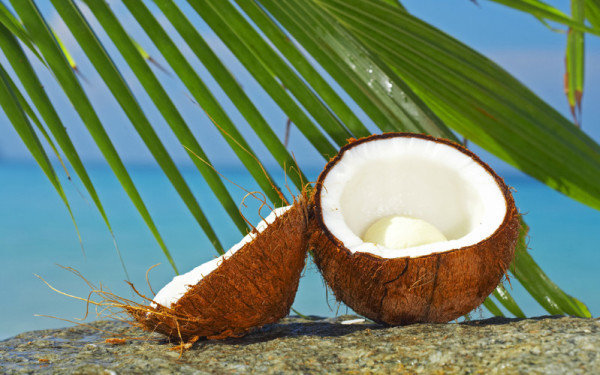 usi dell'olio di cocco