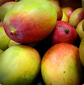 Burro di mango Le erbe di Janas