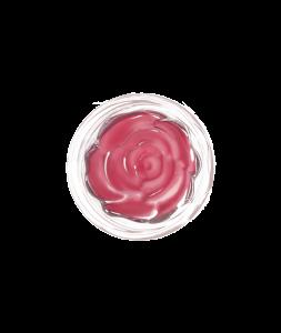 blush-garden-sunday-rose1